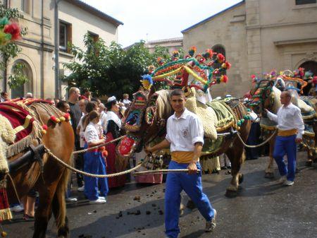 Festivités de la Saint Eloi à Maillane en Provence avec la charrette et ses cavaliers.