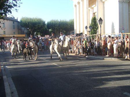 Abrivado dans les rues de Saint Rémy en Provence