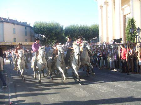 Le spectacle des Abrivados dans les villages provençaux